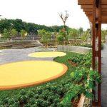 taman hijau (1)